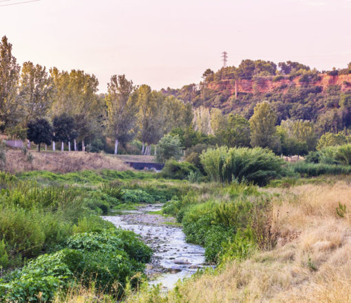 Ripoll river's Parc Fluvial