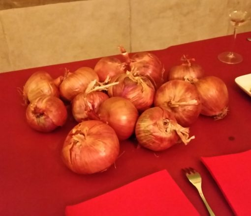 Cebolla de Sabadell